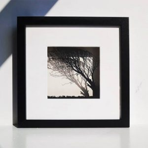 Laser Cut Tree